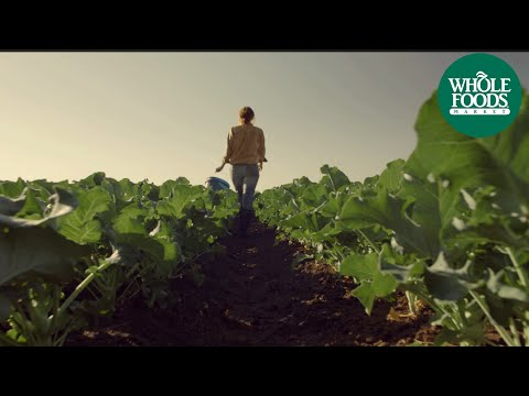 Midwest Whole Foods Market Commercial: Food From A Happy Place   Store Opening   Whole Foods Market